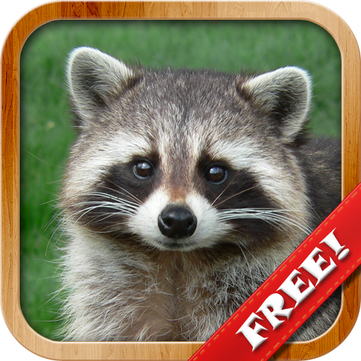 Animals for Kids, Planet Earth Animal Sounds 8.3 APK MOD | Download Android