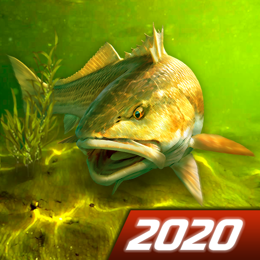 My Fishing World Realistic fishing  1.14.95 APK MOD   Download Android